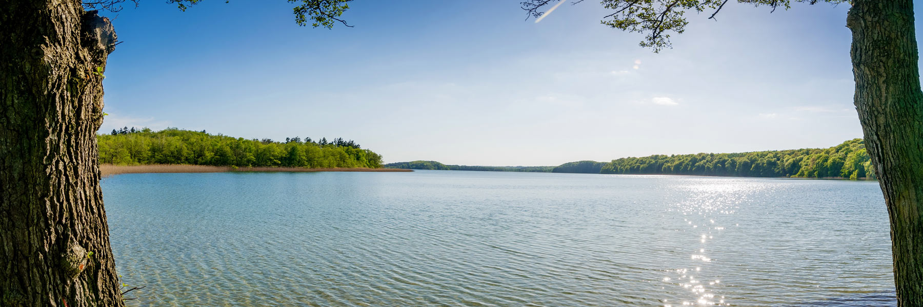 See - Feldberger Seenlandschaft