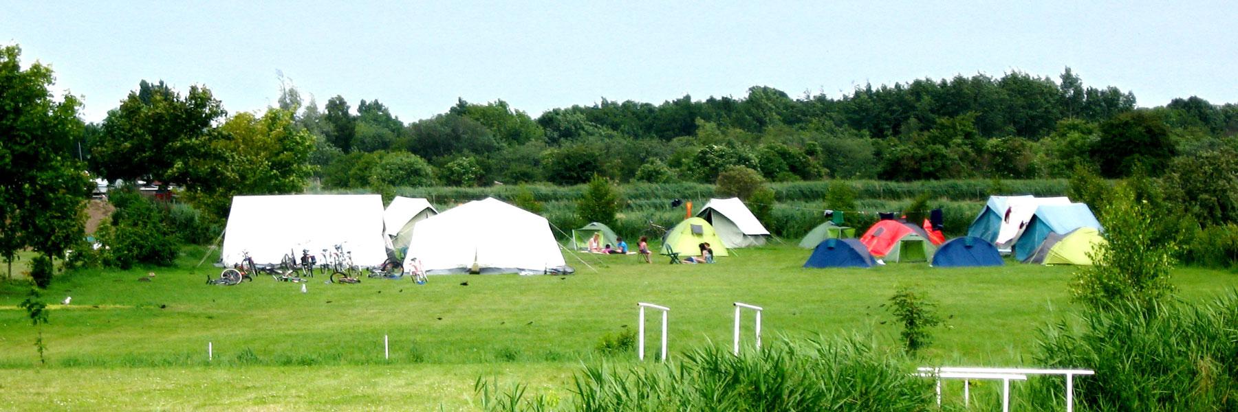 Zeltwiese - Campingplatz Leuchtturm