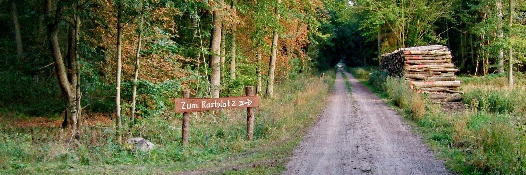 Waldweg - Reiterhof Mietz