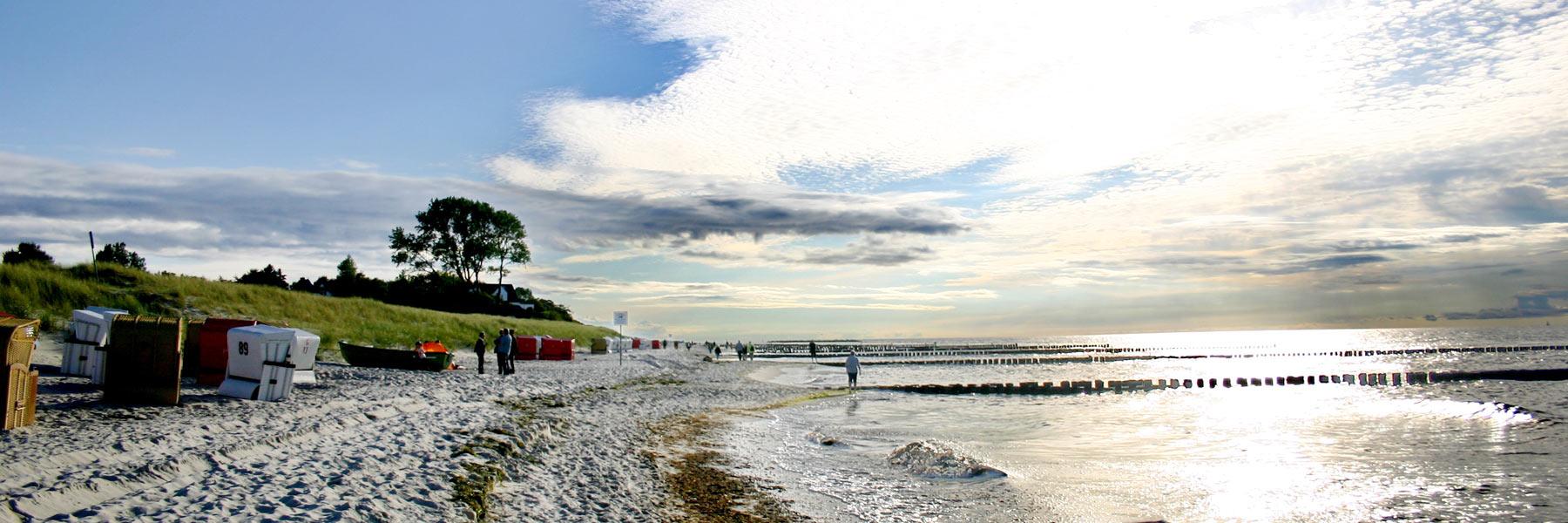 Ostseestrand - Ferienwohnung im Darßer Landhaus