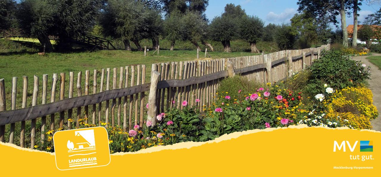 Urige Gärten bei einem Landurlaub in Mecklenburg-Vorpommern entdecken ©LANDURLAUB MV