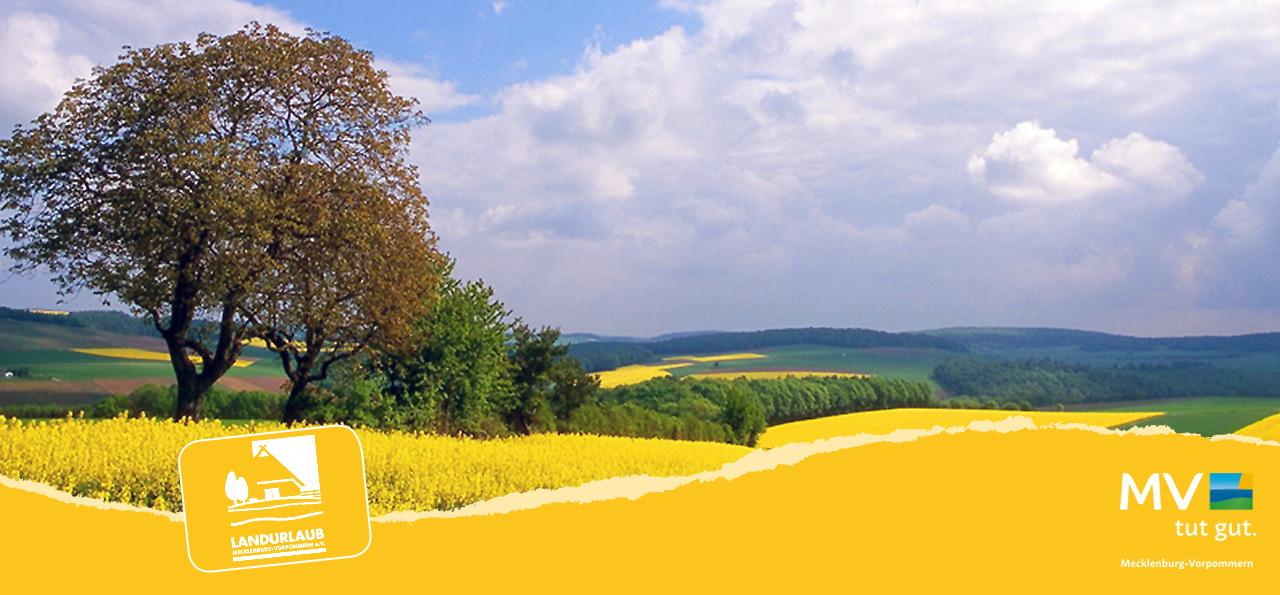 Weites Land - @LANDURLAUB MV/panthermedia.net/Werner Hilpert
