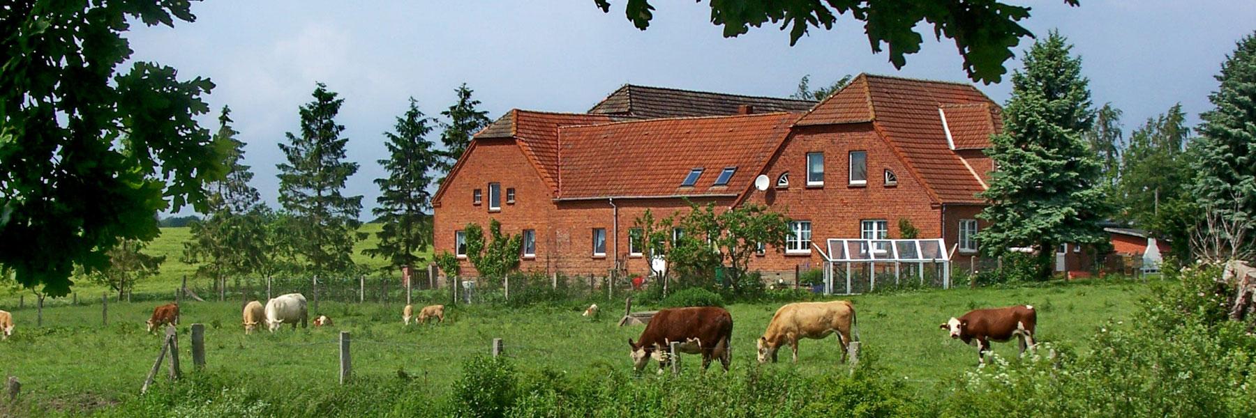Außenansicht - Bauernhof Jung