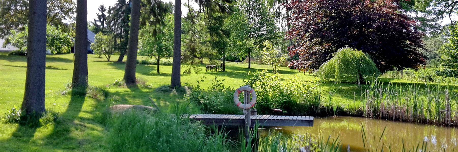 Teich im Park - Ferien- und Bauernhof Diederichs