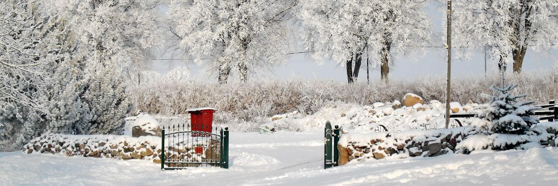 Winteridylle - Ferien- und Bauernhof Diederichs