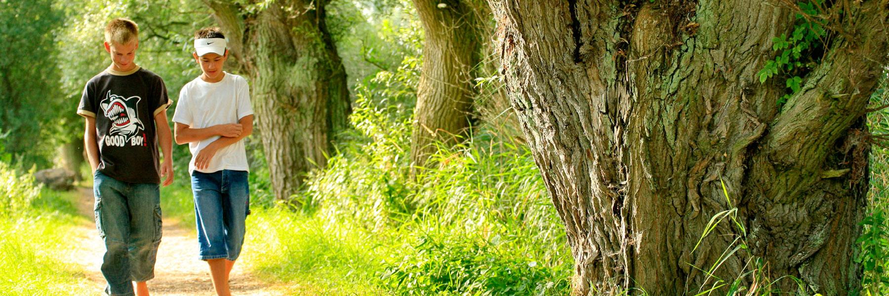 Waldweg - Jugendherberge Teterow