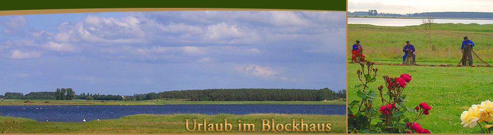 urlaub im blockhaus bei insel ummanz. Black Bedroom Furniture Sets. Home Design Ideas