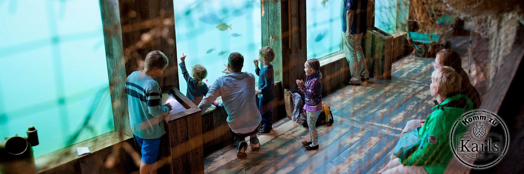 Aquarium - Karls Erlebnis-Dorf