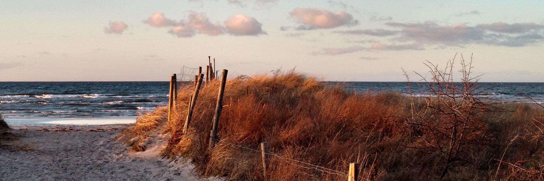 Strandzugang Boltenhagen - Ferienwohnung Nimz