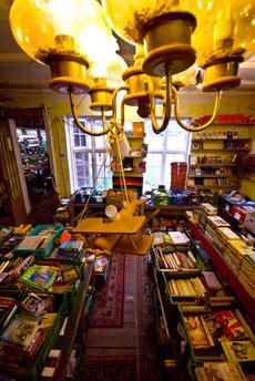 Innenansicht vom Bücherwaldhaus