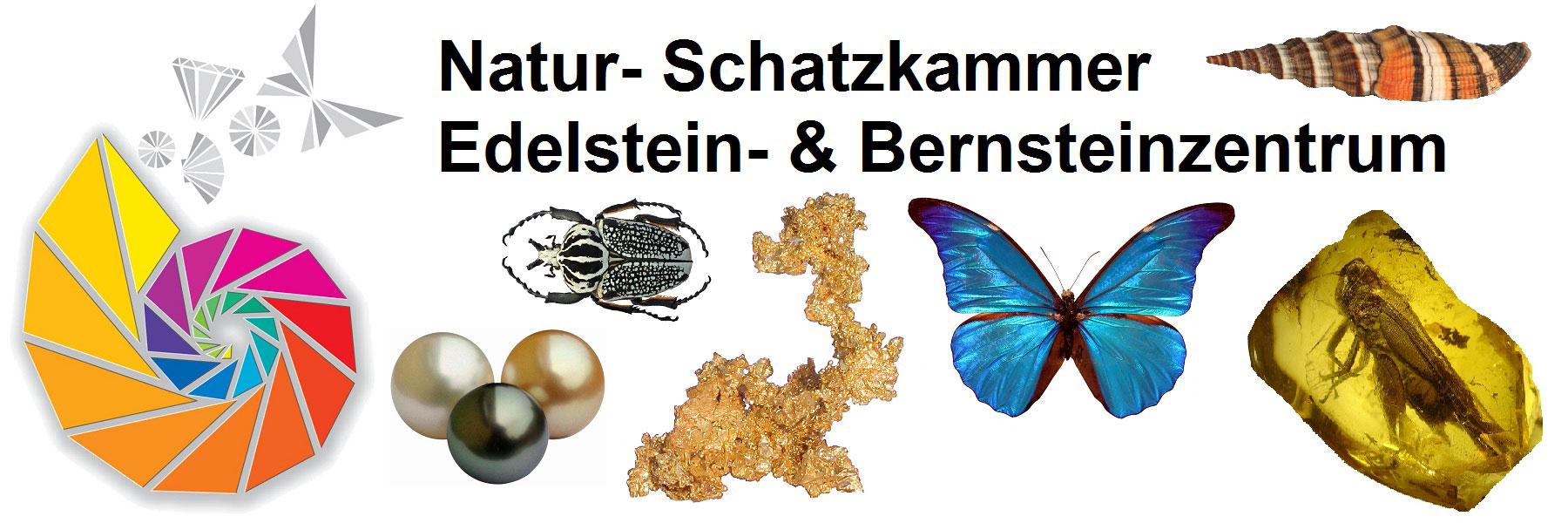 Bernsteinzentrum - Natur-Schatzkammer Neuheide