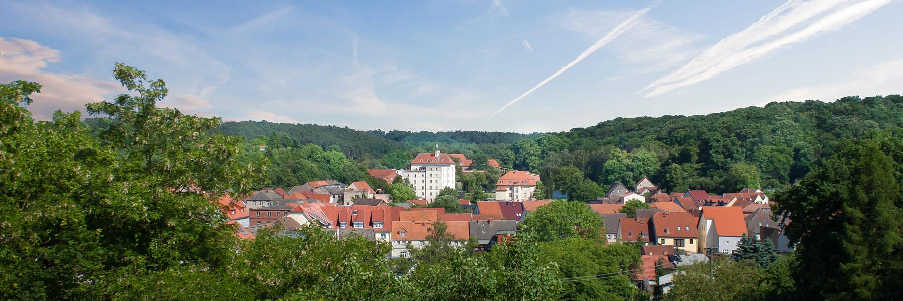 Ortsansicht - Hotel Zur Burg