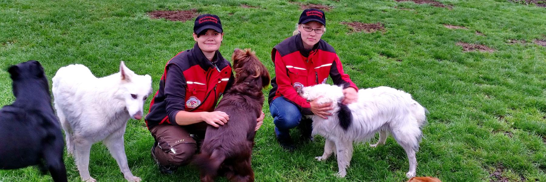 Hundebetreuung - Tierpension Tannenberg