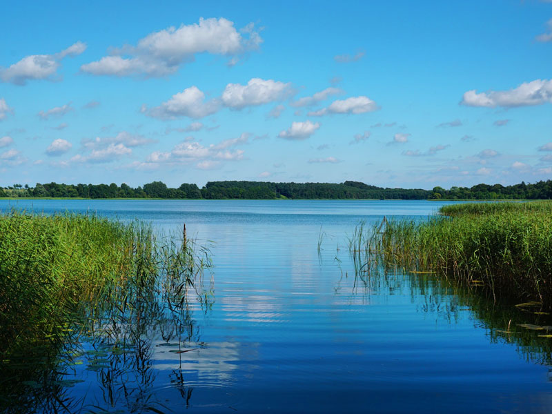 Bioshärenreservat Schaalsee